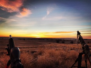 Calling the Kansas sunrise.