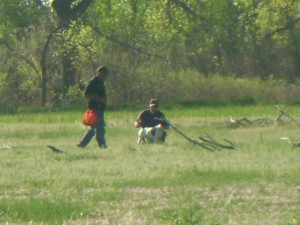 Training a bird dog takes an incredible amount of time and work but its well worth it.
