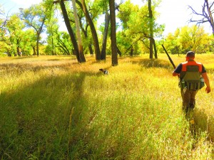 Awesome Colorado fall day with my favorite bird hunting partner. Photo credit: Michelle Haines